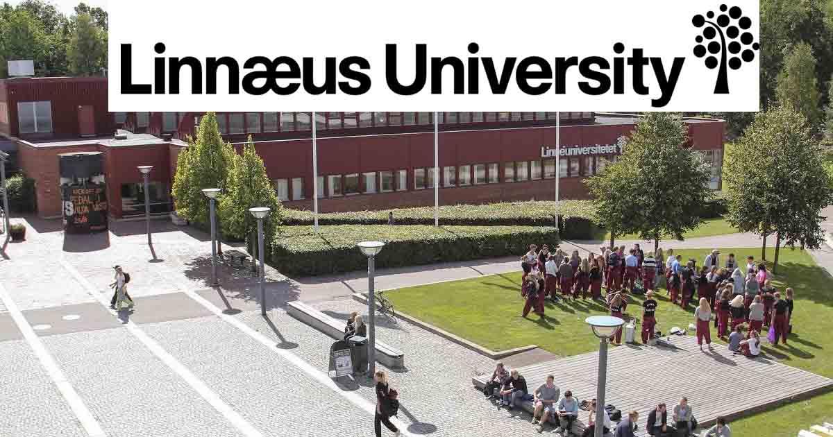 Scholarship in linnaeus university scholarshipcare spiritdancerdesigns Gallery